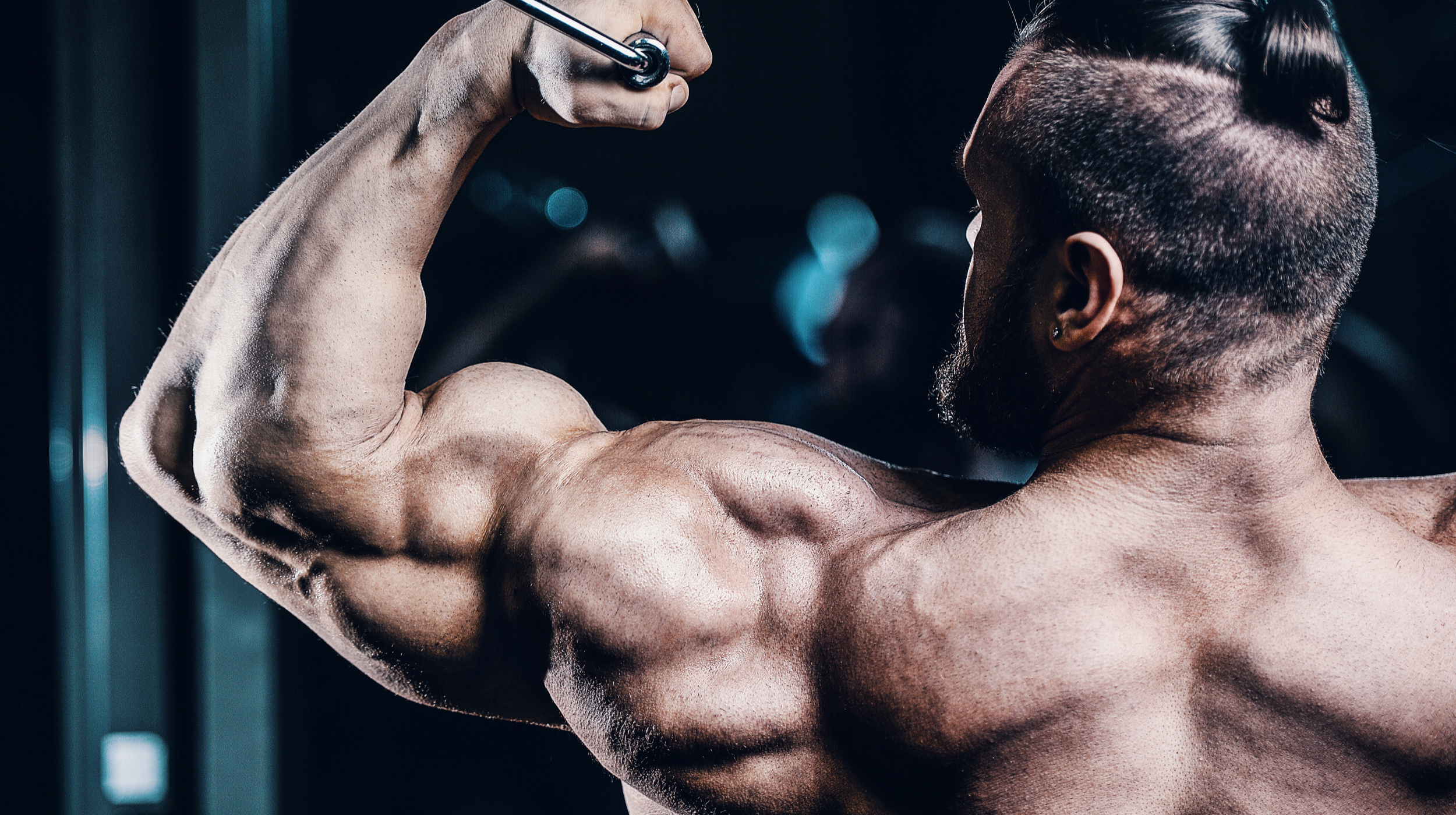 Top Exercises You Should Do If You Want Big Arms