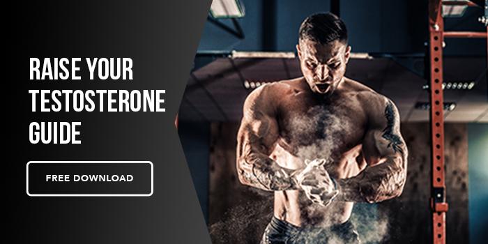Testosterone Guide (1)