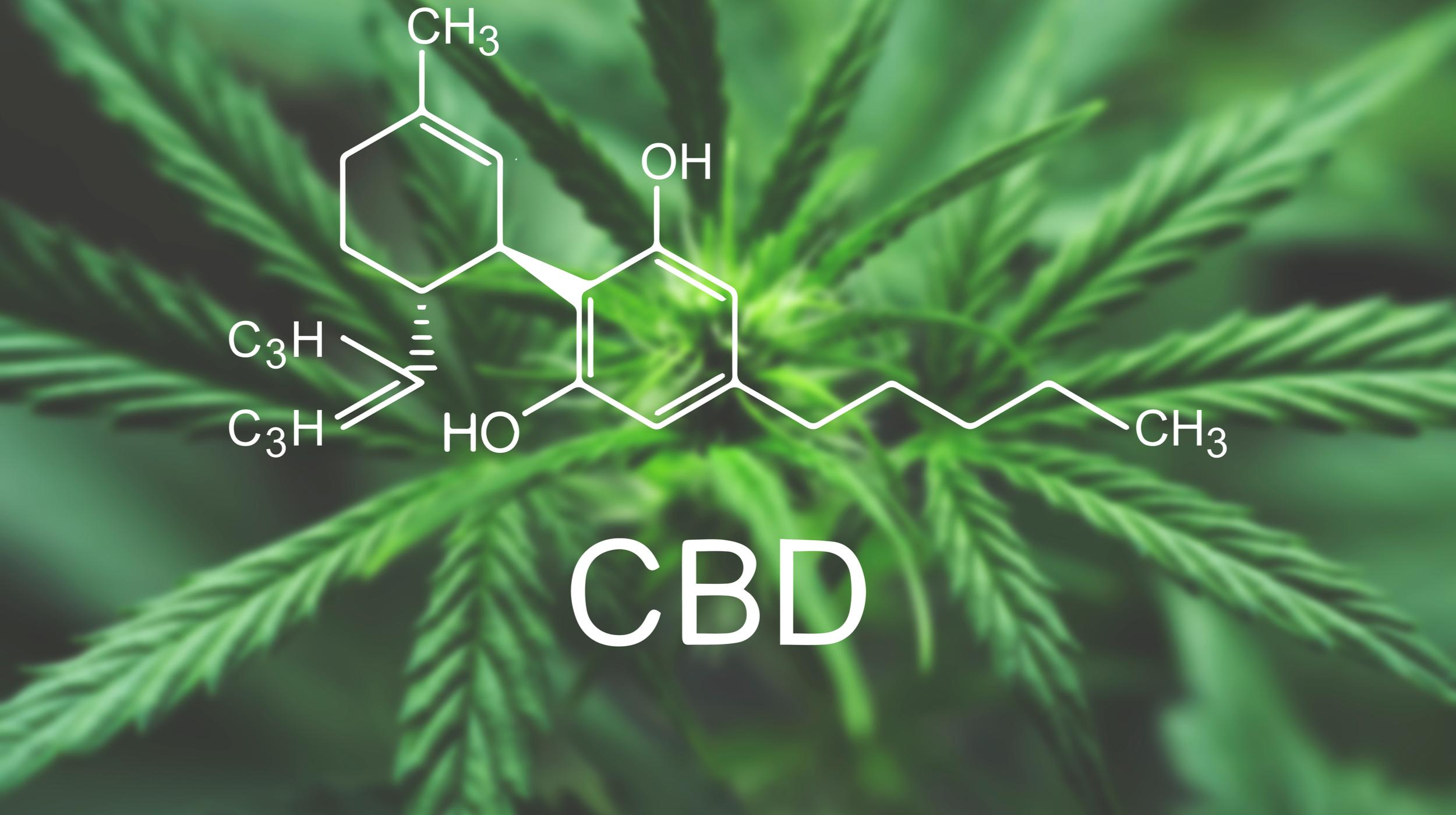 CBD (Cannabidiol) – What is it?