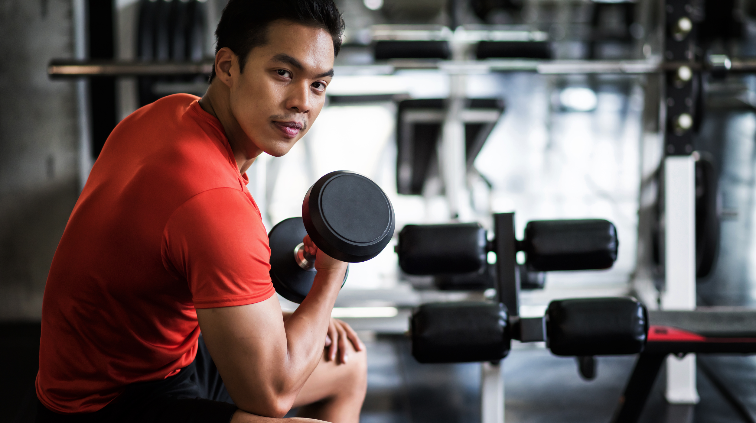 Best Muscle Growth Plan for Beginner Lifters