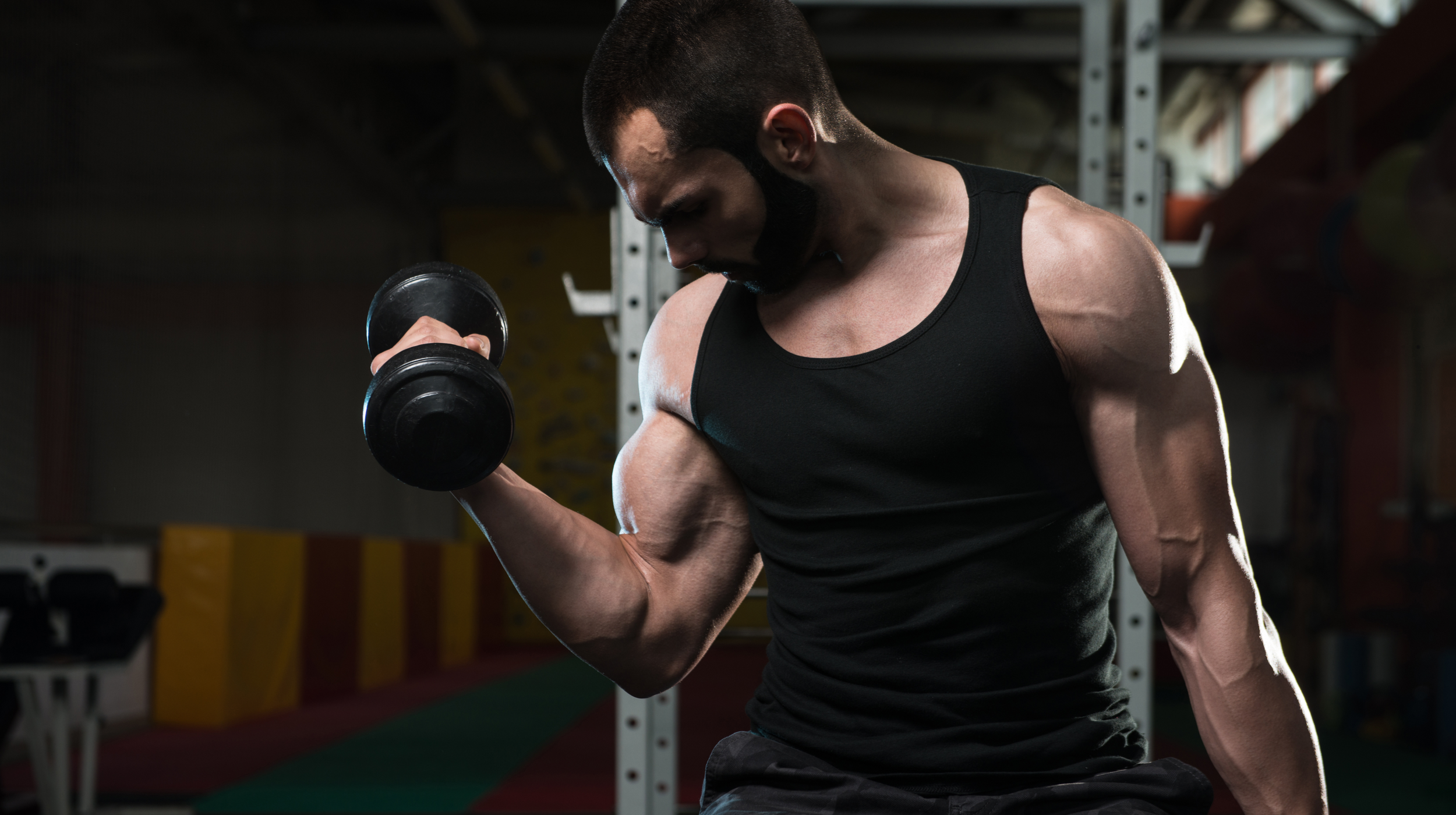 How Often Should I Train My Arms?