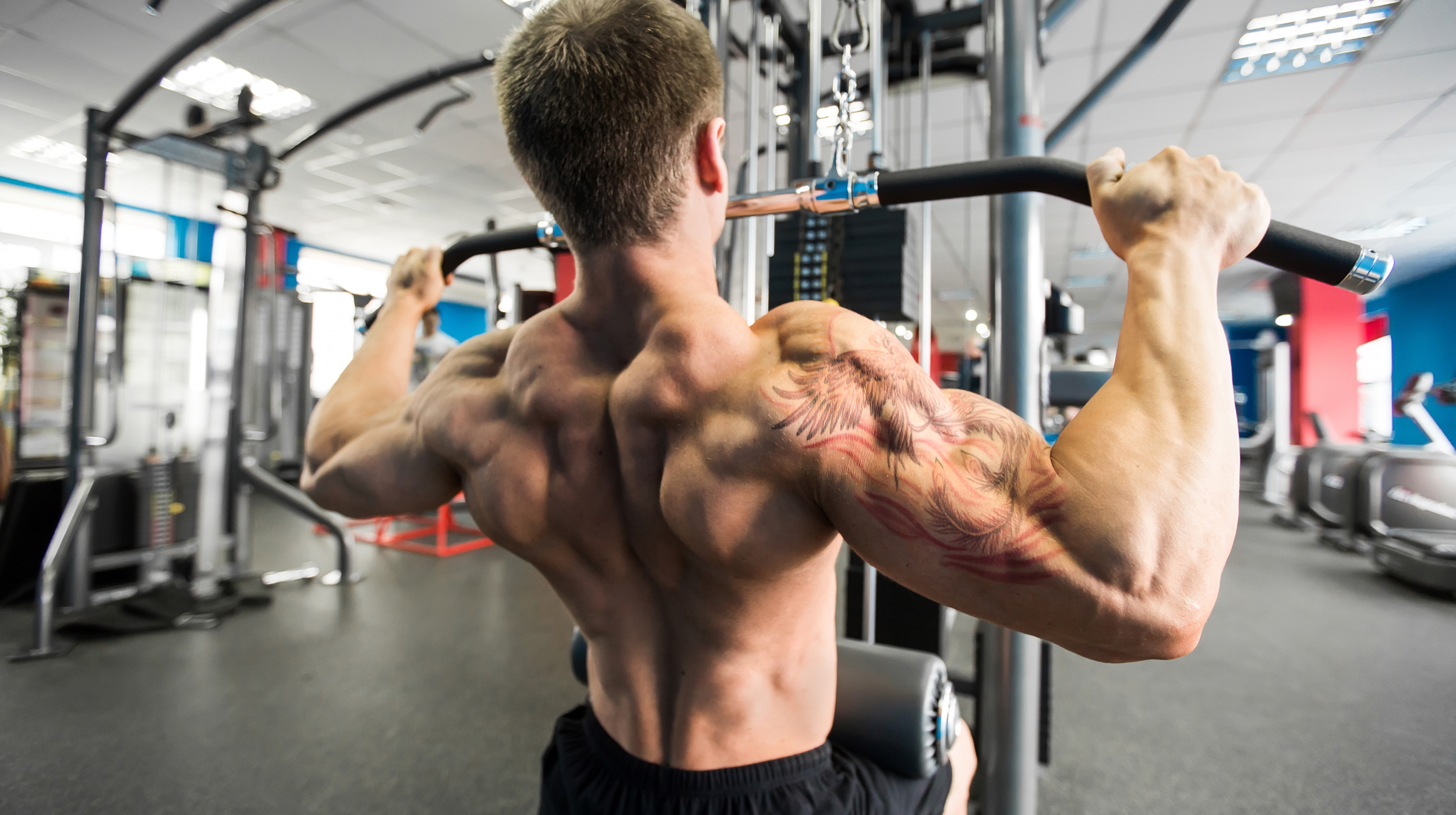 What are the Best Back Workouts for Putting on Size?